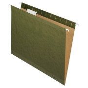 HANGING FOLDER STD. GREEN T.C. (91525X) BOX/25
